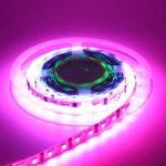 Ampoule LED, plus avantageuse qu'une ampoule à incandescence